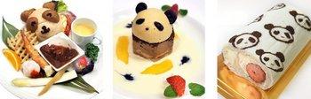 Panda-r.jpg